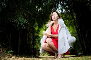 Fotos Asiatische Braunhaarige Sitzend Bokeh Hand Bein Mantel junge frau