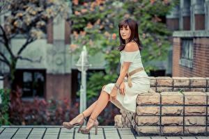 Bakgrundsbilder på skrivbordet Asiatisk Brunhårig tjej Sitter Klänning Ben Dam klackar Unga_kvinnor