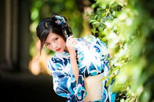 Images Asian Brunette girl Glance Blurred background Shrubs female