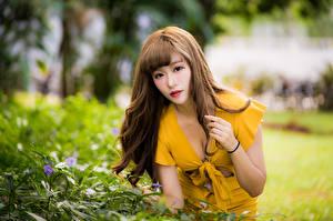 Bilder Asiaten Kleid Blick Unscharfer Hintergrund Braune Haare Mädchens