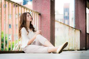 Pictures Asian Fence Bokeh Brown haired Sit Legs female