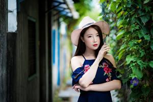 Image Asiatic Bush Bokeh Hat Brunette girl Staring Hands