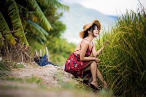 Bilder Asiatische Sitzen Kleid Der Hut Bokeh junge frau