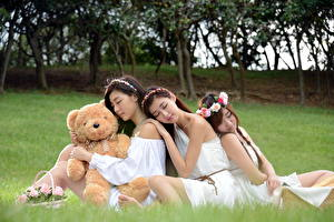 Wallpapers Asiatic Teddy bear Grass Blurred background Sitting Wicker basket Wreath Three 3 Beautiful young woman