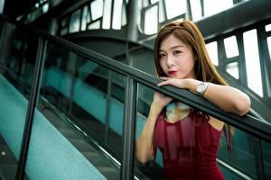 Bilder Asiatische Armbanduhr Unscharfer Hintergrund Braune Haare Starren Hand Mädchens