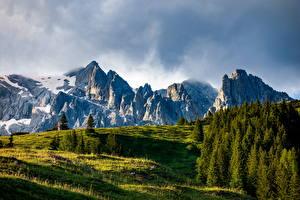 Fotos Österreich Berg Alpen Bäume  Natur