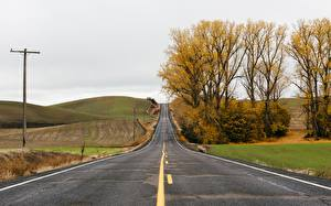 Wallpaper Autumn Roads Trees Hill Asphalt Nature