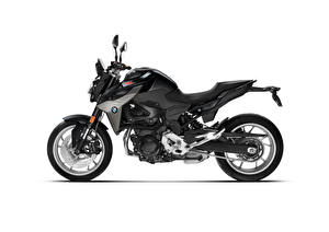Picture BMW - Motorcycle Black Side White background F 900 R, 2020 Motorcycles