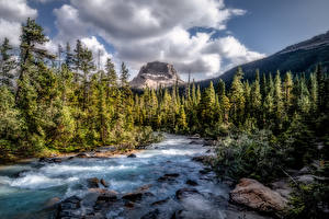 Wallpapers Canada Park Mountain Forest River Stone Landscape photography Clouds Trees Yoho National Park, British Columbia Nature