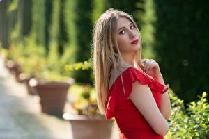 Fotos Blond Mädchen Kleid Blick Unscharfer Hintergrund Chiara junge Frauen