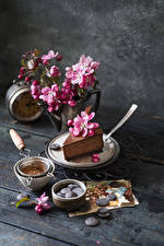 Pictures Chocolate Little cakes Flowering trees Wood planks Branches Petals