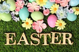 Bilder Ostern Englischer Text Eier