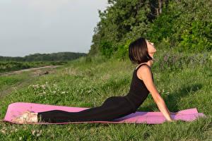Desktop hintergrundbilder Fitness Braune Haare Trainieren Hand Yoga Unterarmstütz junge Frauen Sport