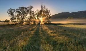 Bilder Deutschland Morgen Morgendämmerung und Sonnenuntergang Acker Bäume Moselle Valley Natur