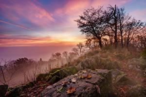 Fotos Deutschland Morgen Sonnenaufgänge und Sonnenuntergänge Stein Bäume Nebel