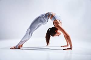Desktop hintergrundbilder Gymnastik Fitness Grau Dehnübung Hand Bein junge frau