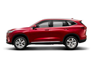 Wallpapers Haval Red Metallic Side Crossover White background Chinese H6, 2020