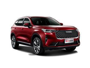 Hintergrundbilder Haval Rot Metallisch Weißer hintergrund Softroader Chinesischer H6, 2020 auto