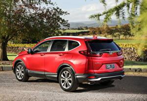 Hintergrundbilder Honda Crossover Rot Metallisch CR-V VTi LX AWD AU-spec, 2020 automobil