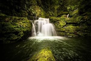 Photo New Zealand Forests Stone Rivers Waterfalls Moss Tautuku River, Lower McLean Falls Nature