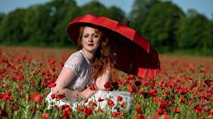 Wallpapers Papaver Red Redhead girl Glance Sitting Parasol Girls