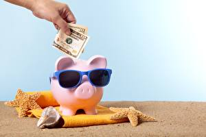 Pictures Shells Sea stars Money Paper money Dollars Piggy bank Glasses Sand Hands