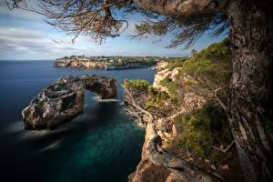 Picture Spain Majorca Mallorca Coast Sea Trees Crag Nature