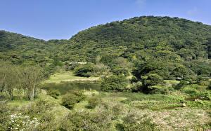 Hintergrundbilder Taiwan See Wald Hügel Strauch Sanzhi District