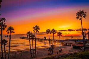 Wallpapers USA Coast Sunrise and sunset Marinas California Palm trees Beach San Clemente Beach