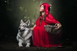 Bilder Wölfe Rotkäppchen Weidenkorb junge Frauen Tiere