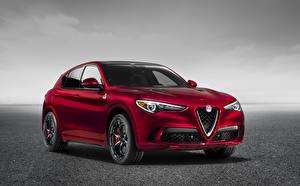 Fotos & Bilder Alfa Romeo Rot Metallisch Crossover Stelvio Quadrifoglio, 949, 2017 Autos