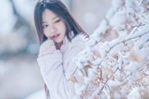 Bureaubladachtergronden Aziaten Onscherpe achtergrond Boomtakken Sneeuw Kijkt Jonge_vrouwen