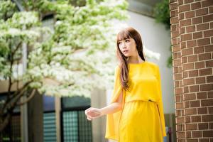 Fotos Asiatisches Unscharfer Hintergrund Kleid Braunhaarige Blick junge Frauen