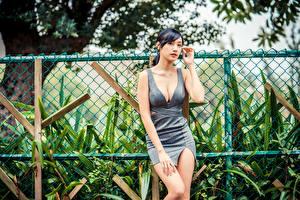 Bureaubladachtergronden Aziaten Jurk Decolleté Een hek Kijkt jonge vrouw