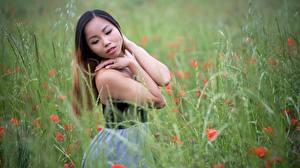 Bilder Asiaten Gras Unscharfer Hintergrund Braune Haare Pose Hand Mädchens