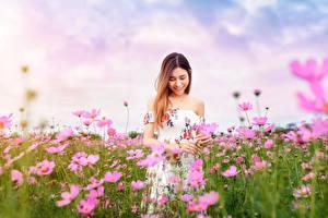 Bureaubladachtergronden Aziatisch Grasland Cosmos geslacht Jurk Glimlach Onscherpe achtergrond Jonge_vrouwen Bloemen