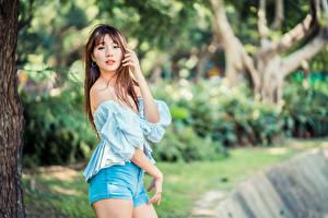 Hintergrundbilder Asiatische Pose Blick Shorts Bluse Bokeh junge Frauen