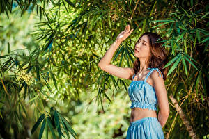 Photo Asian Posing Hands Branches young woman