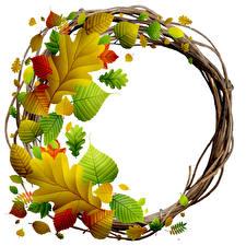 壁纸、秋、木の葉、白背景、テンプレートグリーティングカード、リース、自然、