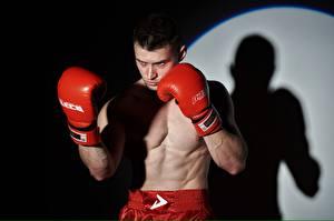 Bilder Boxen Mann Posiert Hand Handschuh Schatten Sport