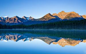 Bilder Kanada See Gebirge Wald Parks Banff Reflexion Herbert Lake, Alberta Natur