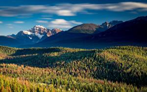 Fotos Kanada Berg Wälder Park Jasper park Alberta, Rocky Mountains