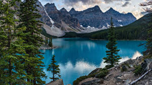 Images Canada Parks Mountains Lake Trees Banff Moraine Lake, Alberta Nature