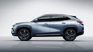 Bakgrunnsbilder Chery CUV Grå Metallisk Kinesiske Sett fra siden eQ5 S61, 2020 automobil