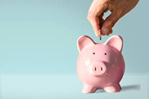 Wallpapers Coins Piggy bank Hands Colored background