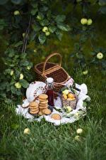 Fotos & Bilder Kekse Aprikose Äpfel Picknick Weidenkorb Flasche Lebensmittel