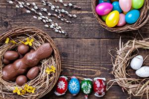 Images Easter Chocolate Hares Egg Nest