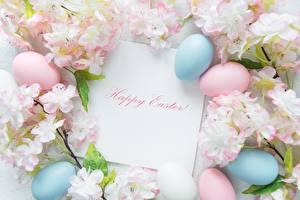 Bilder Ostern Englische Text Eier