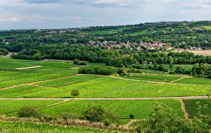 Desktop hintergrundbilder Frankreich Haus Felder Dorf Santenay, Bourgogne Natur