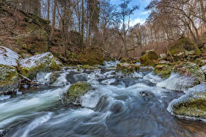 Image Germany Forest River Stone Trees Moss Ice South-Eifel